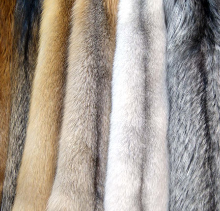Меха. Купить мех искусственный в интернет-магазине тканей. Мех по ... 1ad9abd21c8